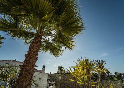 Casa-Rica-Algarve-2 (16)